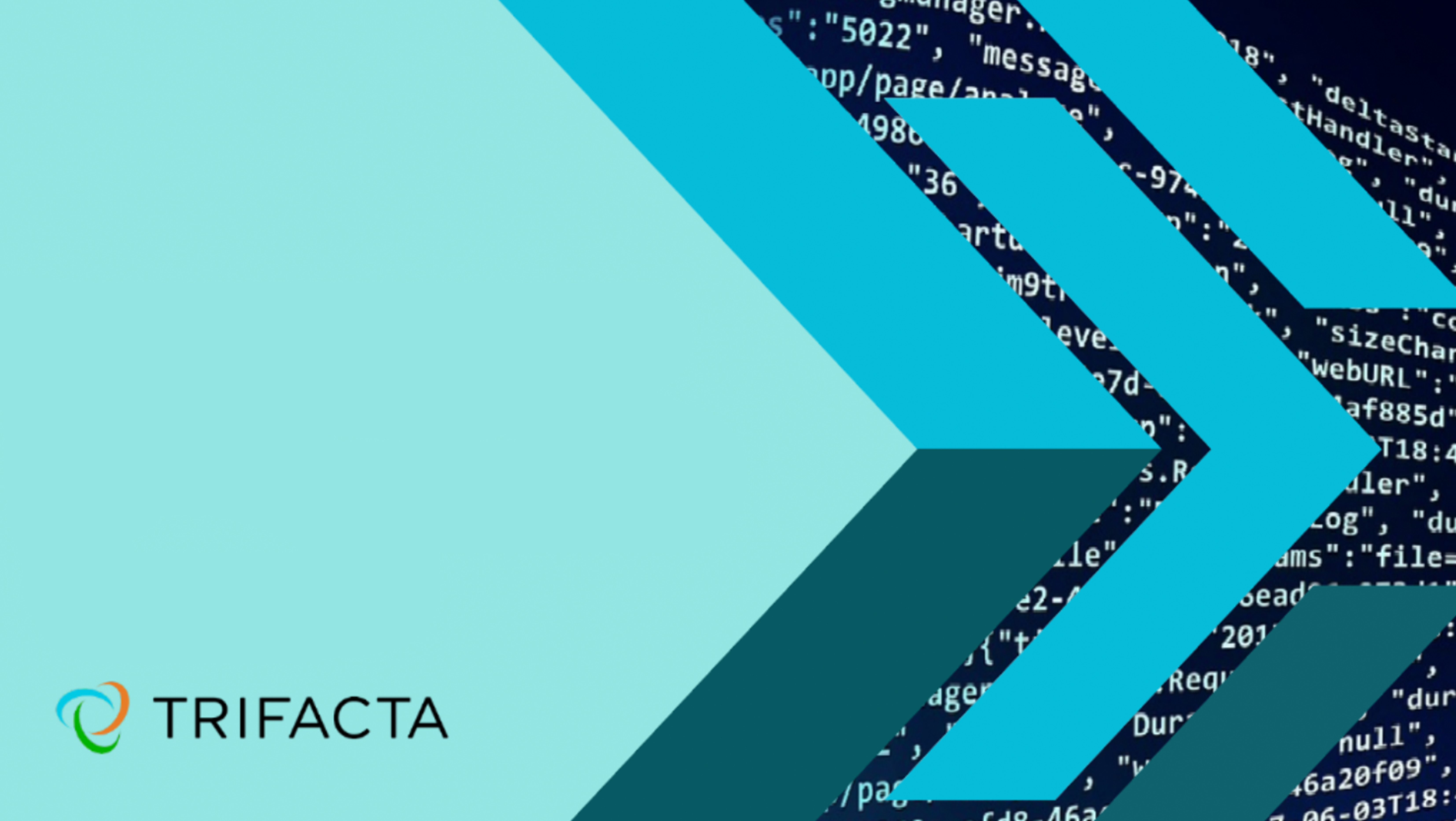 Blog Banner - Trifacta - The Insight-Rich Organisation 2019